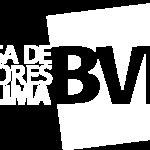BOLSA DEVALORES DE LIMA